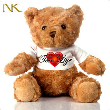 #product tere liye teddy front
